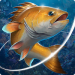 Fishing Hook Mod Unlimited Money – Game Lưỡi Câu